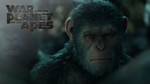 """War for the Planet of the Apes """"Apes Together Strong"""" TV Commercial 20th Century Fox"""