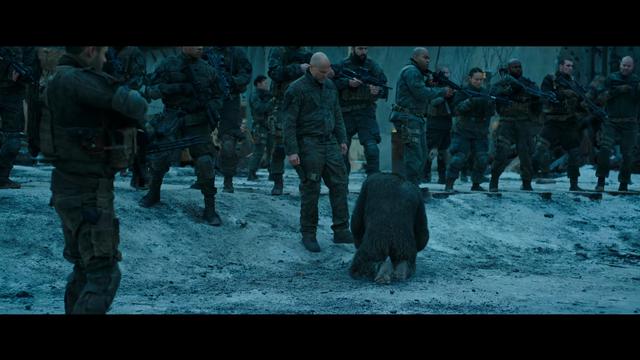 File:WPOTA Caesar kneels before the Colonel.png
