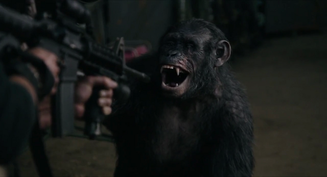 File:Koba acts like a playful bonobo.png