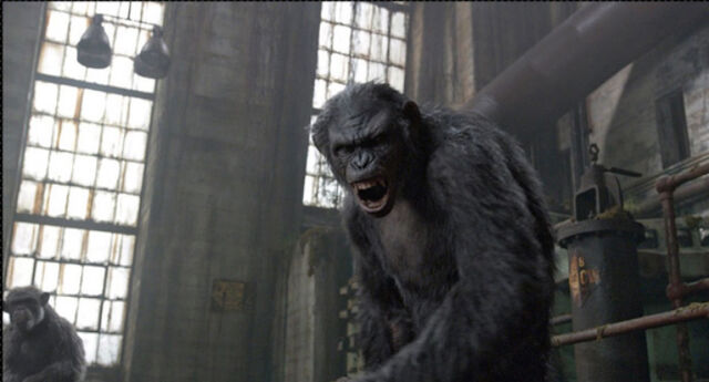 File:Dawn-of-the-planet-of-the-apes-ew-2.jpg
