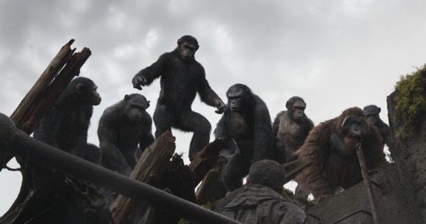 File:Movies-dawn-of-the-planet-of-the-apes-01.jpg