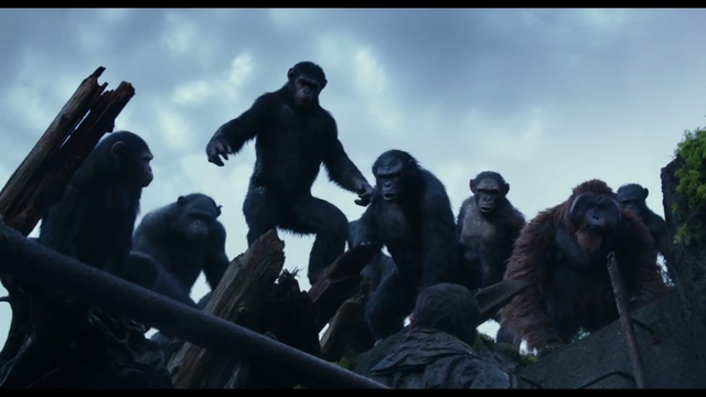 File:Apes 2.png