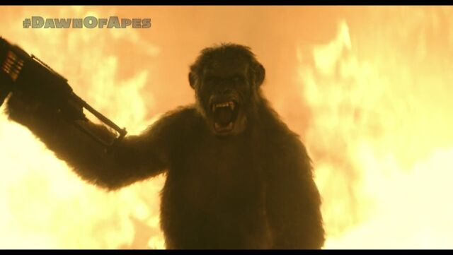 File:Koba on horse jumping through fire.jpeg