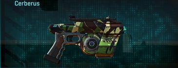 African forest pistol cerberus