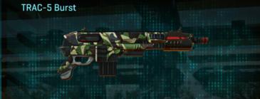 African forest carbine trac-5 burst
