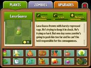 Lavaguava almanac2