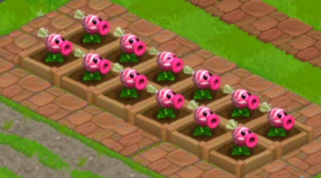 File:Sweet Peas.png.jpg