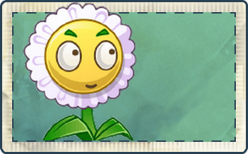 File:Small Mari Seed Packet.png