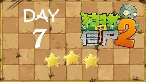Kung Fu Day 7 TS