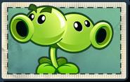 Split Pea Seed Packet