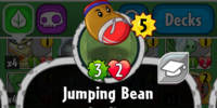 Jumping Bean/Gallery