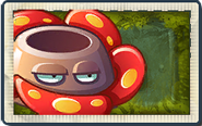 Rafflesia Lost City
