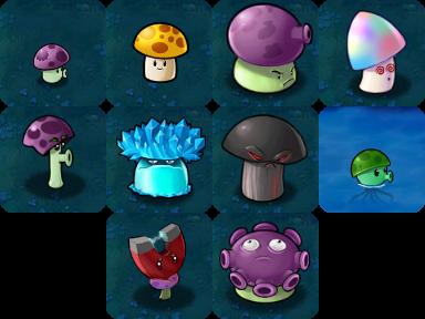 The Ten Mushrooms