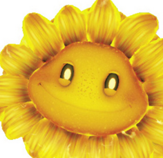 File:Fire Flower2.png