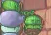 DS Melon-pult