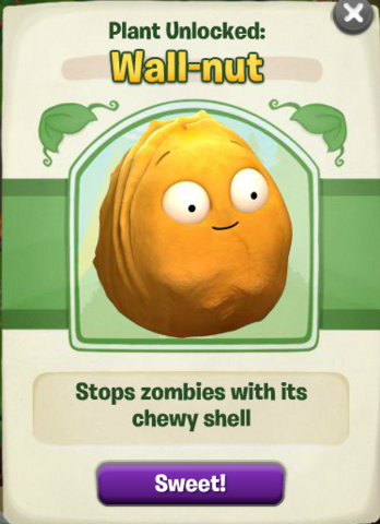 File:Adv-Wall-nut Packet.png