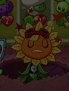 Solar Flare defeated