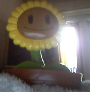 File:Sunflowerfromrestaurant.jpg