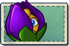 File:Shrinking Violet Seed Packet-1-.png