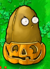File:Tall nut pumpkin.PNG
