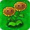 Twin Sunflower1.png