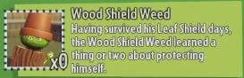 File:WoodShieldGW2Des.png