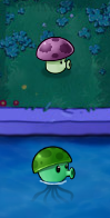 File:Difference between shroom and sea.png