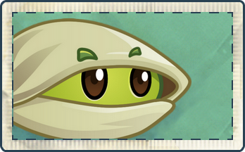 File:Pistachio Seed Packet.png