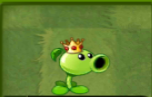 File:Peashooter's Costume on Chinese Version.PNG