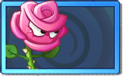 File:Roseswordman Rare Seed Packet.png