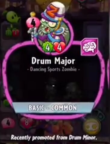 File:Drum Major description .jpeg