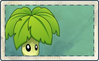 File:Umbrella Leaf Seed Packet.png