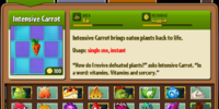 Intensive Carrot/Gallery