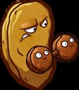 Health-Nut HD
