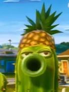 Pineapple Hat 15
