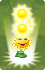 File:Sunflower PF.png