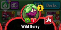 Wild Berry/Gallery
