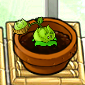 File:Smallcabbage.png