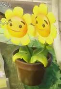 Twin Heal Flower 10