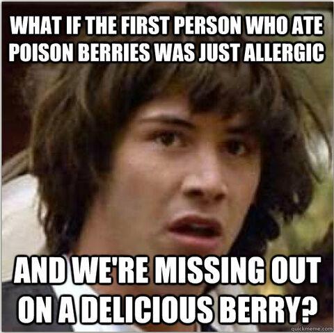 File:WHAT IF BERRY POAOHFA.jpg