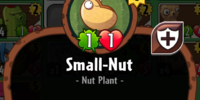 Small-Nut