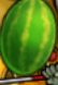 File:Melonflying.png
