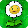 File:Giant Marigold1.png