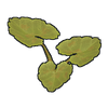 Pumpkin Plant Clone icon