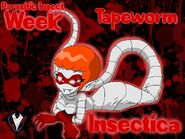 Insectica - Tapeworm - Parasitic Insect Week