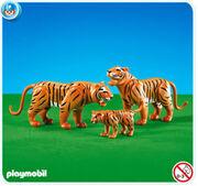 New tigers