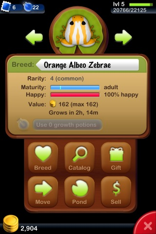 File:Orange Albeo Zebrae.jpg