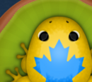 Pocket Frogs Wiki