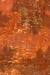 Orange paint habitat