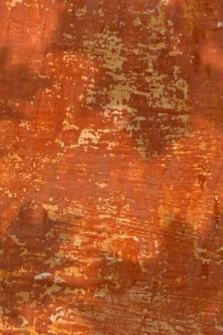 File:Orange paint habitat.png